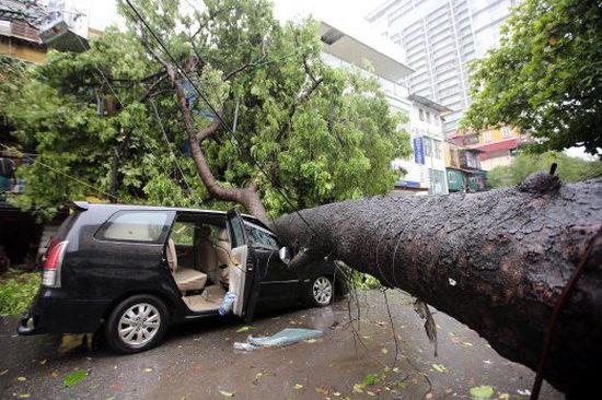 طوفان شدید ویتنام را درنوردید