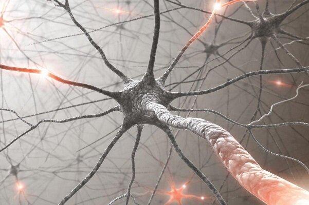داروی ضدسرطان ژن های خاص را هدف می گیرد