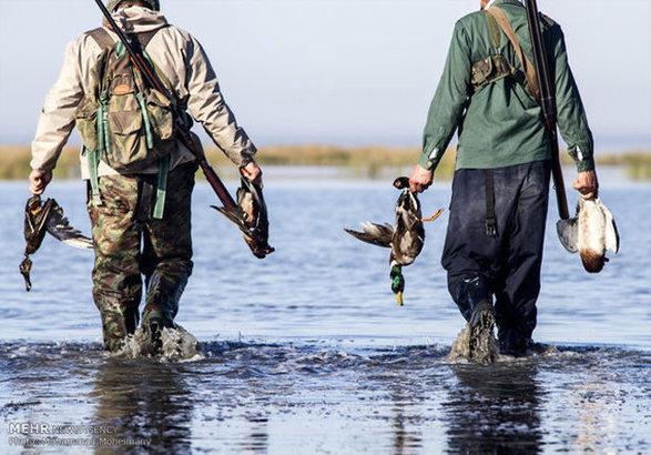 صید غیرقانونی پرندگان مهاجر وجهه محیط زیست ایران را خدشه دار کرده است