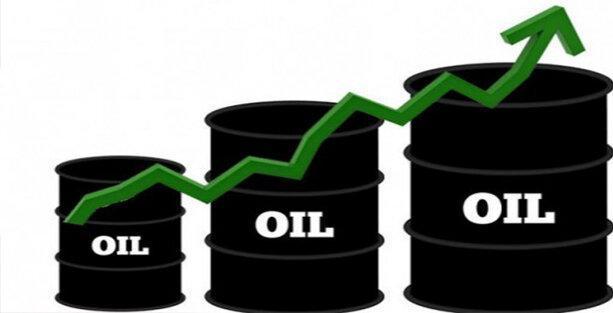ترمز ریزش قیمت نفت کشیده شد