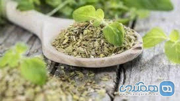 گیاهانی جادویی که مسائل ریوی و تنفسی را درمان می نمایند
