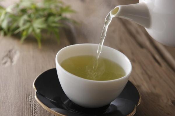 چای سبز به درمان کرونا یاری می نماید؟ چقدر بخوریم؟