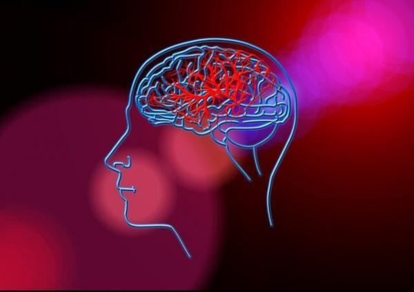پیش بینی احتمال سکته مغزی با یک تراشه کوچک
